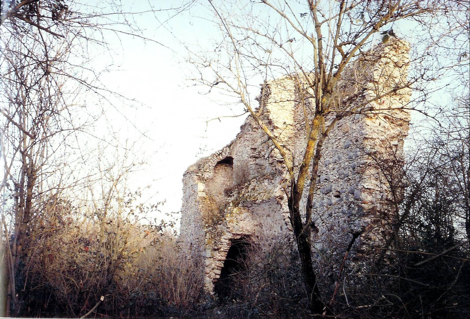 La Motte Féodale de la Tour Neuve